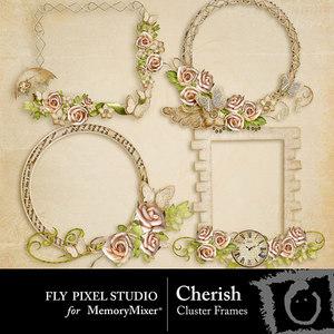 Cherish cluster frames medium