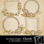 Cherish Cluster Frame Pack-$1.99 (Fly Pixel Studio)