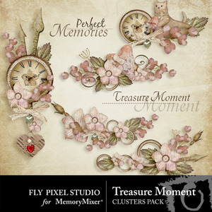 Treasure moment clusters medium