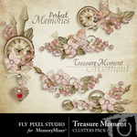 Treasure Moment Cluster Pack-$1.99 (Fly Pixel Studio)