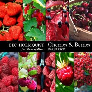 Cherries and berries pp medium