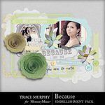 Because Embellishment Pack-$2.49 (Traci Murphy)