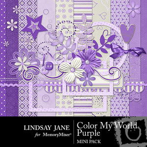 Color my world purple mini medium
