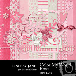 Color my world rose mini medium