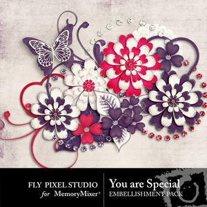 You are special emb medium