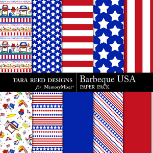 Barbeque usa pp medium
