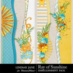 Ray of sunshine borders medium
