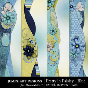 Pretty in paisley blue borders medium