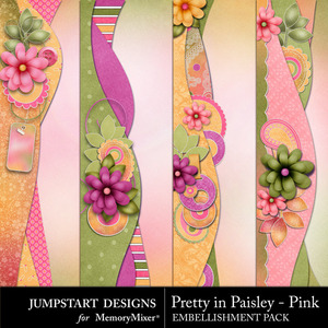 Pretty in paisley pink borders medium