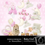 Baby Girl ID Cluster Pack-$1.99 (Indigo Designs)