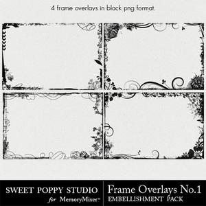Frame medium