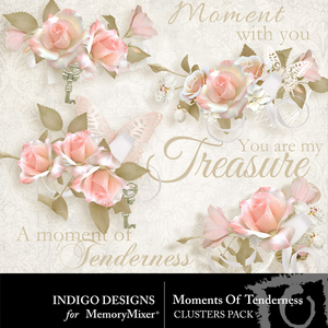 Moments of tenderness clusters medium