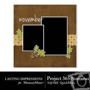 1 project 365 nov square medium