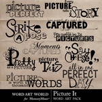 Picture It WordArt Pack-$2.49 (Word Art World)