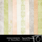 Special Moment Paper Pack-$2.99 (Indigo Designs)