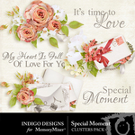Special Moment Cluster Pack-$1.99 (Indigo Designs)