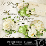 Feelings Cluster Pack-$1.99 (Indigo Designs)
