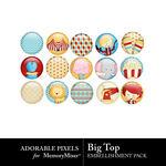 Big Top Flair Pack-$1.99 (Adorable Pixels)