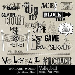 Volleyball word art medium