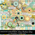 One Perfect Day Combo Pack-$4.99 (Laura Burger)