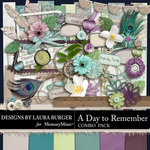 A Day To Remember Combo Pack-$4.99 (Laura Burger)