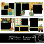 Funkarooni QuickMix-$5.00 (Amy Sumrall)