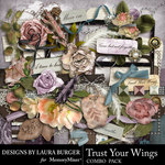 Trust Your Wings Combo Pack-$4.99 (Laura Burger)