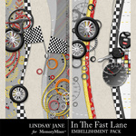 In The Fast Lane Borders-$1.99 (Lindsay Jane)