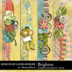 Brighton Borders-$2.49 (Laura Burger)