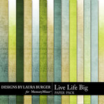 Live Life Big Solid Paper Pack-$1.40 (Laura Burger)