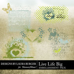 Live life Big Grungies-$1.00 (Laura Burger)