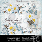 Simple Moments ID Clusters-$1.99 (Indigo Designs)