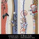 A Boys Life Borders-$1.99 (Lindsay Jane)