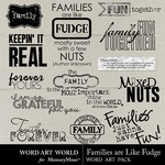 Families are like fudge small