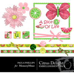 Citrus Delight Embellishment Pack-$2.99 (Paula Phillips)