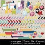 Project Pix Embellishment Pack 2-$3.49 (Lindsay Jane)