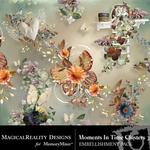 Moments In Time Cluster Pack 3-$1.99 (MagicalReality Designs)