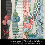 Birthday Wishes Border Pack-$1.99 (Lindsay Jane)