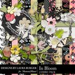 In Bloom Combo Pack-$4.99 (Laura Burger)
