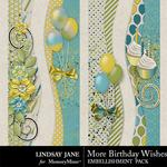 More Birthday Wishes Borders-$1.99 (Lindsay Jane)