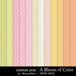 A Bloom of Color Pattern Paper Pack-$1.40 (Lindsay Jane)