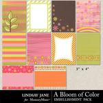 A Bloom of Color Journal Cards-$1.40 (Lindsay Jane)
