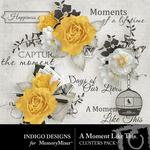 A Moment Like This Clusters-$1.40 (Indigo Designs)