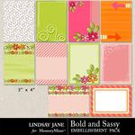 Bold and Sassy Journal Cards-$1.99 (Lindsay Jane)