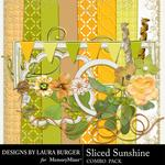 Sliced Sunshine Add On Combo Pack-$4.99 (Laura Burger)