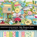My Project June Combo Pack-$4.99 (Laura Burger)