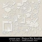 Project Pix 1 Acrylics-$1.99 (Lindsay Jane)