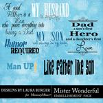 Mister Wonderful WordArt Pack-$2.49 (Laura Burger)