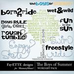 The Boys of Summer WordArt Pack-$1.99 (Fayette Designs)