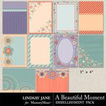 A Beautiful Moment Journal Cards-$1.99 (Lindsay Jane)